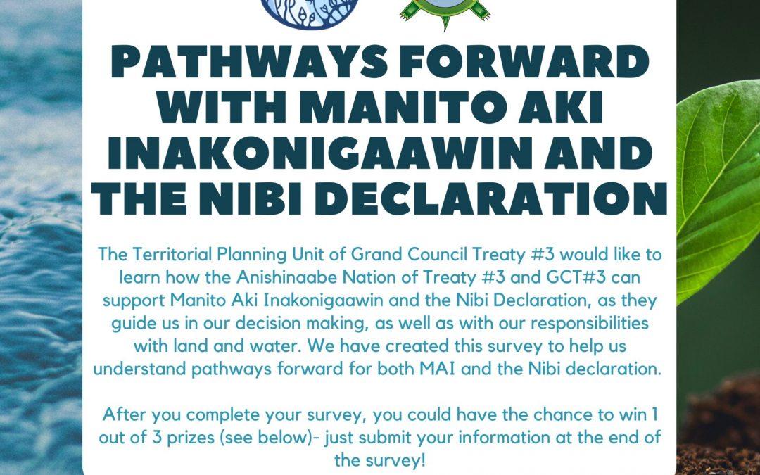 Pathways Forward with Manito Aki Inakonigaawin and the Nibi Declaration